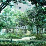 井の頭公園の森 継承プロジェクト 三鷹の杜ザ・ハウス デザイン